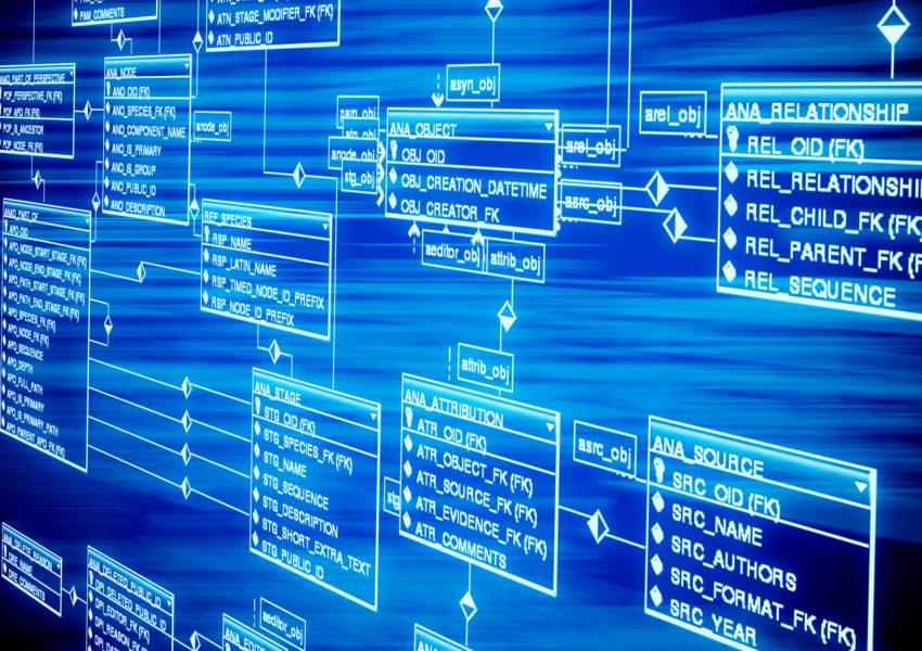 User Database - Organizes Customer Data For Easy Retrieval